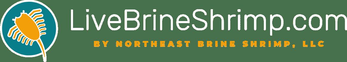 Live Brine Shrimp