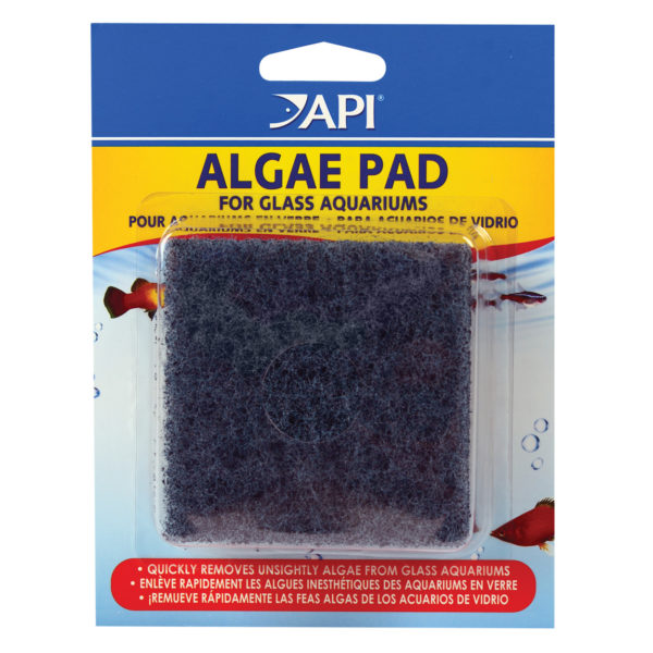 Algae Pad for Glass