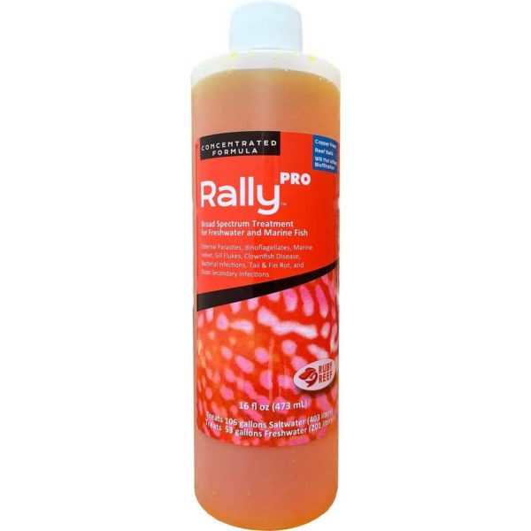 Ruby Reef Rally Pro 16 oz